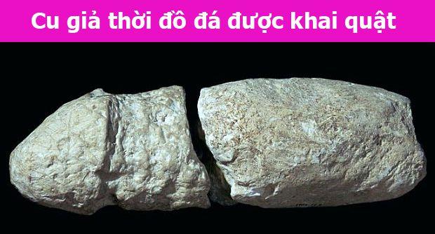 cu giả chất liệu đá thô sơ